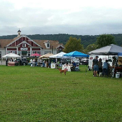 The Market at Long Valley